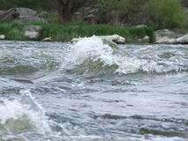 Südlicher Programmfehler-Fluss Weg auf dem Vorstadtwald Stockbild