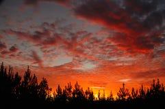 Südlicher Sonnenuntergang, Sonnenaufgang Lizenzfreies Stockfoto