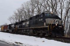 Südlicher Zug Norfolks, der durch Schnee reist Stockfotografie