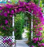 Südliches Gartentormit Bouganvillea lizenzfreie stockbilder