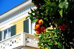 Südliches historisches Haus Stockfotos