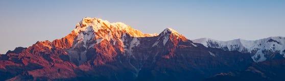 Südpanorama Annapurna während der goldenen Stunde mit klarem Himmel, Himalaja lizenzfreies stockbild