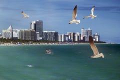 Südstrand, Miami stockfotografie