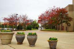 Südwesten Tennessee Community College Stockfoto
