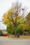 Südwesten Tennessee Community College Stockbilder