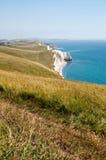 Südwestküstenweg, Dorset Stockfotografie