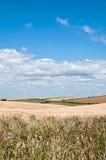 Südwestküstenweg, Dorset, Großbritannien Lizenzfreies Stockfoto