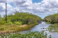 Sümpfe von Florida-Everglades-Nationalpark lizenzfreies stockbild