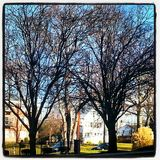 Sąsiedztwo strzał Foresthill pkwy leemie Zdjęcia Royalty Free