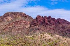 Sępa szczyt w Arizona Saguaro kaktus blisko bazy; niebieskie niebo i chmury zasięrzutni fotografia stock