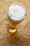 Słód i piwo Fotografia Stock