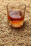 Słód i whisky Fotografia Stock