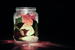 Słój dekorował z jesień liśćmi z świeczką wśrodku zdjęcia royalty free