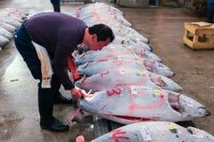 Sławna tuńczyk aukcja przy Tsukiji rybim rynkiem Obrazy Stock
