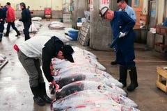 Sławna tuńczyk aukcja przy Tsukiji rybim rynkiem Zdjęcie Royalty Free