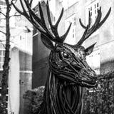 Sławne rzeźby Amsterdam centrum miasta Generał kształtuje teren widok miasto zabytki & sztuka protestuje Zdjęcie Stock