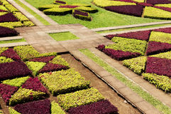 Sławni Tropikalni ogródy botaniczni w Funchal Obrazy Stock