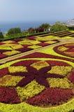 Sławni Tropikalni ogródy botaniczni w Funchal Zdjęcia Royalty Free