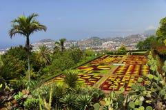 Sławni Tropikalni ogródy botaniczni w Funchal Obraz Royalty Free