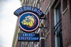 Sławny coffeshop buldog w Amsterdam mieście, holandie fotografia stock