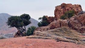 Sławny Marokański rezerwuar blisko Agadir Zdjęcia Royalty Free