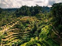 Sławny punkt w Bali! zdjęcia royalty free