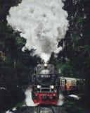 Sławny zwiedzający pociąg w Szwajcaria lodowiec Ekspresowy wewnątrz zdjęcie stock