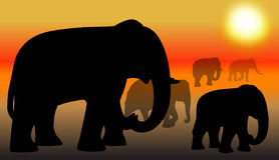słoń grupa royalty ilustracja