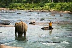 Słoń i ludzie Obrazy Royalty Free