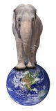 Słoń na Kuli ziemskiej Obrazy Royalty Free