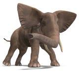 słoń ogromny Fotografia Stock