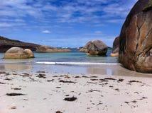 Słoń plaża Obrazy Royalty Free