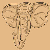 słoń rysunkowa głowa Zdjęcia Royalty Free