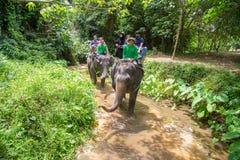Słoń, słoń przejażdżka, - Bangpa safari w pięknym lasowym conv Zdjęcie Royalty Free