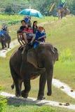 Słoń, słoń przejażdżka, zwierzę Fotografia Royalty Free