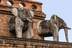 Słoń statua, Wata chedi luang świątynia w Tajlandia Zdjęcia Royalty Free