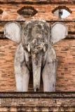 Słoń statua, Wata chedi luang świątynia w Tajlandia Zdjęcia Stock