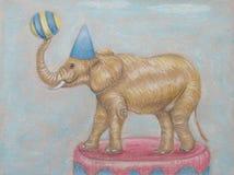 Słoń w cyrku Obraz Stock