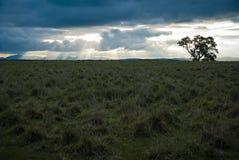 Słońca łamanie przez zmrok chmury Fotografia Stock