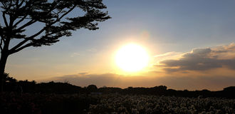 Słońca światło 111 i niebo Obrazy Royalty Free