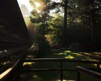Słońca świecenie Przez drzew przy Łomota Hall obraz stock