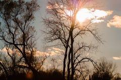 Słońca jaśnienie na pięknym jesień dniu zdjęcia royalty free