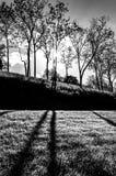 Słońca jaśnienie przez drzew i cieni na trawie przy Antietam N Zdjęcie Stock