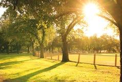 Słońca jaśnienie przy parkiem Zdjęcie Royalty Free