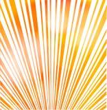 Słońca Sunburst tło Obraz Stock