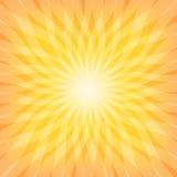 Słońca Sunburst wzór Fotografia Stock