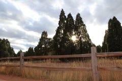Słońca zerkanie Fotografia Stock