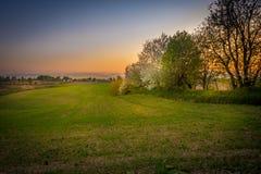 Słońce, drzewa i piękny chmurny niebo, fotografia royalty free