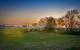 Słońce, drzewa i piękny chmurny niebo, obraz royalty free