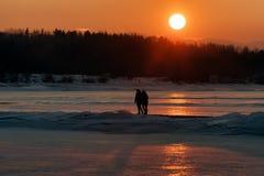 Słońce i para na spacerze Zdjęcia Royalty Free